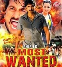 Phir Ek Most Wanted (2009) Telugu Movie (Hindi Dubbed) | WorldFree4u.Tv | 3GP MOBiLE MOViES | Scoop.it