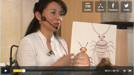 [Vidéo] Cochenille, insecte et colorant | EntomoScience | Scoop.it