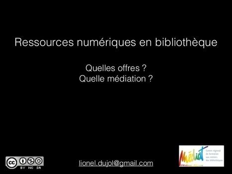 Ressources numériques en bibliothèque : quelles...   Politique documentaire BM, BU, BDP   Scoop.it