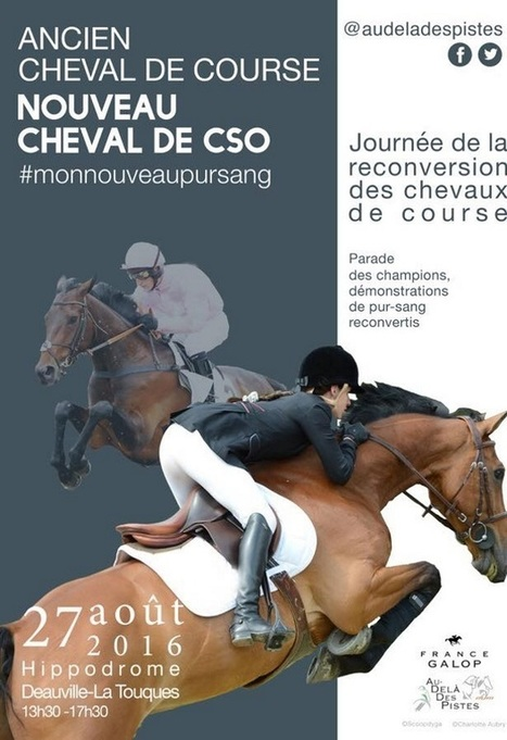 Reconversion du cheval de course, l'avenir des courses - Equidia Live | Cheval et sport | Scoop.it
