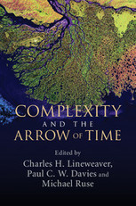 Complexity and the Arrow of Time | History, philosophy and foundations of physics | Information Processing in Complex Systems | Scoop.it