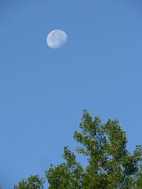 Where's the moon? Waning gibbous | EarthSky.org | World Spirituality and Religion | Scoop.it