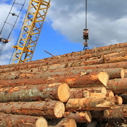 Pennsylvania sales tax exemptions may expand to logging industry | Timberland Investment | Scoop.it