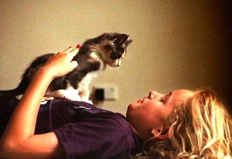 Coping With The Death Of A Family Pet - Global Animal | Animals R Us | Scoop.it