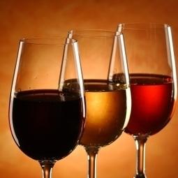 Bon cadeau : Cours d'œnologie formule duo autour de Lyon | Boutique oenotourisme sur Mon Vigneron | Tourisme viticole en France | Scoop.it