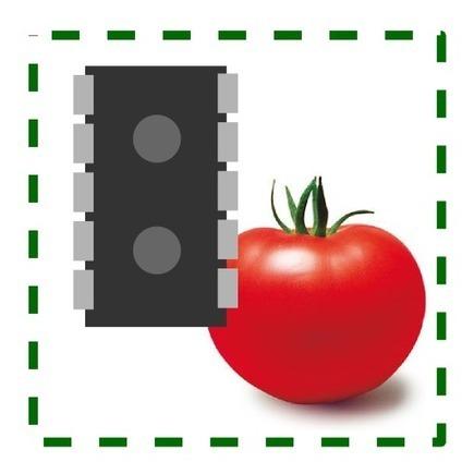 knaka IT-blog: アグリ系なシステム。開発者向け記事まとめ | Raspberry Pi | Scoop.it