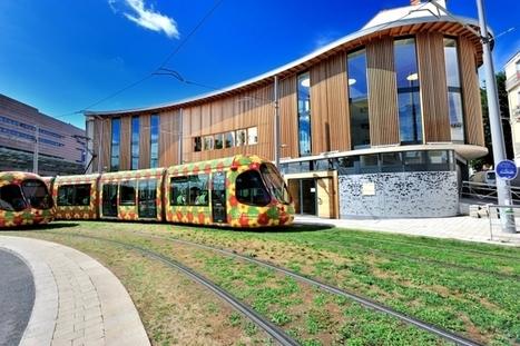 Blog Architecture Environnement | Edito: Architecture et Biodiversité, le pari gagnant pour Montpellier | Architecture Environnement, le blog ! | Scoop.it