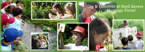 Webinars | phytopharmaceuticals, pollinators, biodiversity | Scoop.it