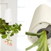 Upside Down Planters for the Home | Digital-News on Scoop.it today | Scoop.it