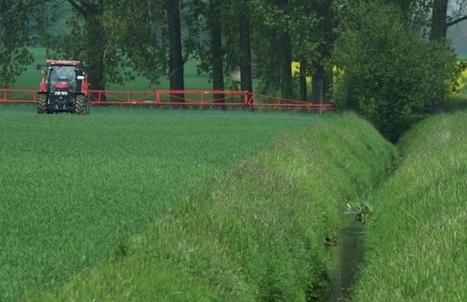 Pflanzenforschung.de :: Insektizid-Belastung deutlich höher als erwartet Forscher haben weltweit die Belastung von Gewässern analysiert | Agrarforschung | Scoop.it