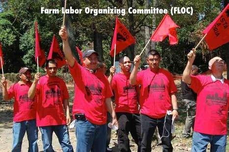 Farmworkers in North Carolina Facing Dire Conditions | North Carolina Agriculture | Scoop.it