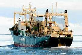 Military icebreaker arrives to defend Japanese whalers | Nature Animals humankind | Scoop.it