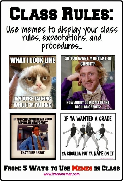 Mrs. Orman's Classroom: Five Ways to Use Memes to Connect With Students | Common Core Resources for ELA Teachers | Scoop.it