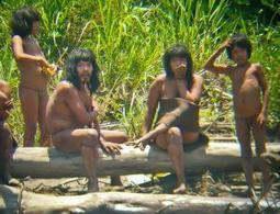 How many uncontacted tribes are left in the world? - life - 22 August 2013 - New Scientist | Science and Nature | Scoop.it