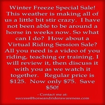 """It's time for a Winter Freeze Sale Get Your Virtual Session Today!  Improve your riding, teaching or Training Skills"" 