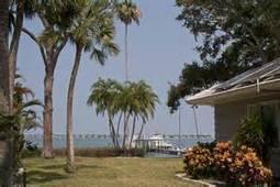 Glria Philips Blog: Merritt Island tree service- Tree Service Business   Pioneer in Tech Posts   Scoop.it