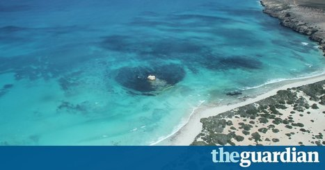 'Great Australian Bight oil drilling plans too 'technical' for FoI release, says regulator' | Mining, Drilling and Discovery | Scoop.it