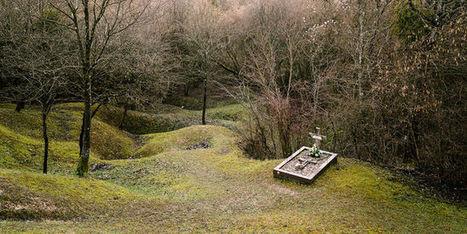 A Verdun, sous la forêt, les plaies | Chroniques du centenaire de la Première Guerre mondiale : revue de presse | Scoop.it