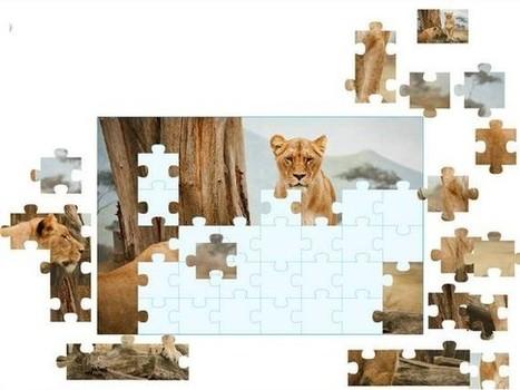 Puzzle avec vos propres images | Ressources Ecole | Scoop.it