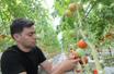 Fermes Lufa: l'expansion des fermes urbaines passe par Laval | Nourrir la ville | Scoop.it