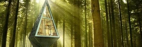 Futuristic Tree Houses Take Us Back To Nature   Post-Sapiens, les êtres technologiques   Scoop.it