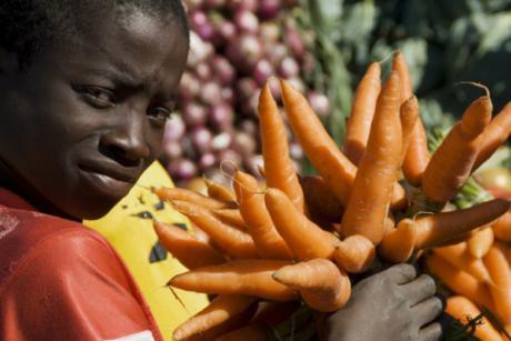 L'UE finance un programme d'intégration pour l'ensemble de l'Afrique | coopération et développement international | Scoop.it