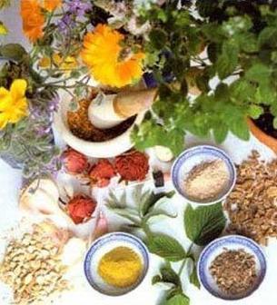 Procedure Of Finding The Best Ayurvedic Doctor In India | Magic Of Nature | Scoop.it