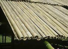 CONSTRUCCION CON BAMBÚ O GUADUA | La Casa de Guadua | Bamboo | Scoop.it