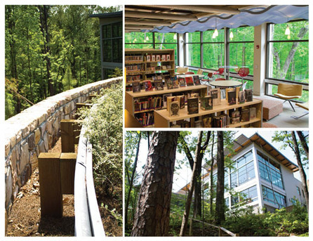 UpClose: Rooted in Nature | Library by Design, Fall 2015 | innovative libraries | Scoop.it
