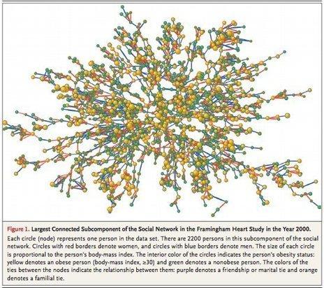 Votre réseau est beaucoup plus important que vous ne l'imaginez | Emotions - Positiveness - Leadership | Scoop.it