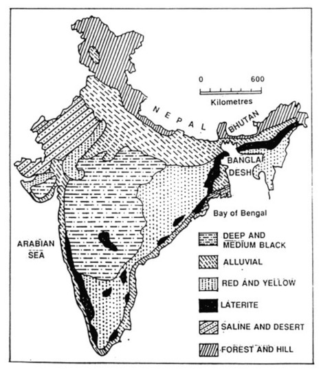 Physical division of india 003 indian geograp for Soil of india