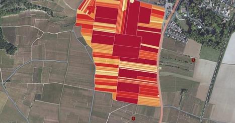 LE CLOS DE VOUGEOT : Parcellaire actuel et anciens lieux-dits (interactif) | Le vin quotidien | Scoop.it