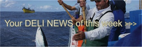 5 New Tuna Flavours from Azores | Deli news - Visit Portugal by flavours | Scoop.it