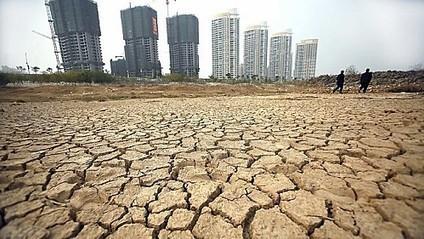 La sécheresse affecte 7,3 millions d'hectares de champs en Chine | Questions de développement ... | Scoop.it