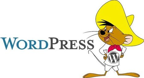 Speeding Up Your WordPress Website: 11 Ways to Improve Your Load Time | Lectures web | Scoop.it