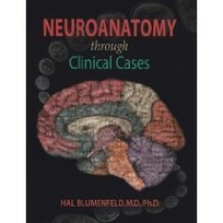 Neuroanatomy Through Clinical Cases 2nd Ed + Neuroscience 4th Ed (9780878933822) Hal Blumenfeld, Dale Purves, George J. Augustine, David Fitzpatrick, William C. Hall | Downloads – hotfile, rapidsha... | Neuroanatomy through Clinical Cases. 2nd ed. | Scoop.it