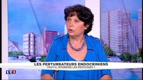 Les vidéos info - Les perturbateurs endocriniens, symptômes du déficit démocratique de l'Union européenne   L'écologie politique dans l'Ain   Scoop.it