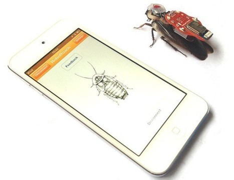 RoboRoach surgery kit comes to Kickstarter: a remote control for real cockroaches | Crowdfunding World | Scoop.it