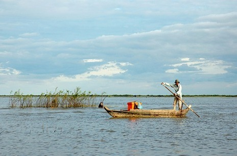 Tonle Sap Lake Program | Year 7 Science: Biodiversity of the Tonle Sap Lake environs | Scoop.it