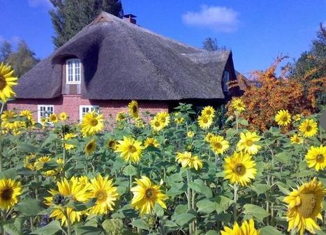Location de vacances en Schleswig-Holstein | Allemagne tourisme et culture | Scoop.it