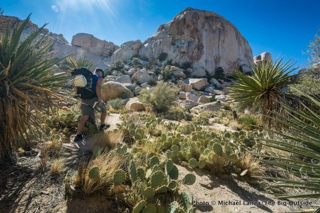 Photo Gallery: California's National Parks   Authentic Yosemite   Scoop.it
