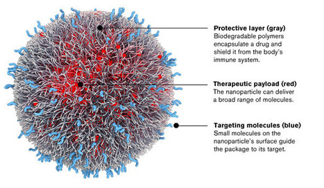 Programmable Nanoparticles for Fine-tuning Nanotech to Target Cancer | Amazing Science | Scoop.it