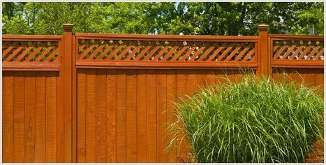 shining cool Orange Fence style | Lovely Image Picture Photo and Wallpaper | Scoop.it