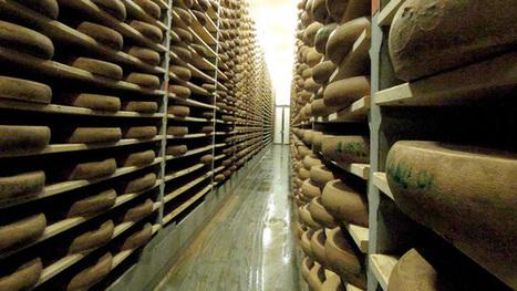 Etats-Unis : les amoureux du fromage bientôt privés de comté ? | The Voice of Cheese | Scoop.it