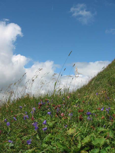 La Suisse - Championne du monde du développement durable! | Actualité des vacances | Scoop.it