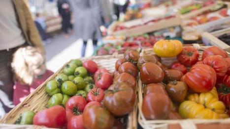 Les producteurs de fruits et légumes lancent leur logo «made in France» - Le Figaro | Le Fil @gricole | Scoop.it