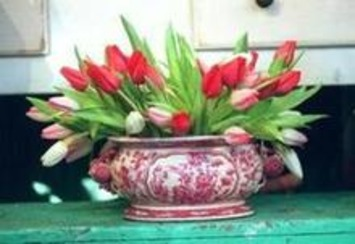 Spring is just around the corner... really   Container Gardening   Scoop.it