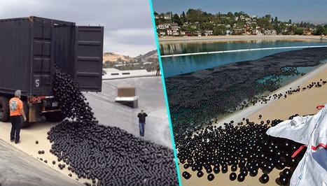 La Californie contrainte de jeter des balles de plastique dans ses lacs | The Blog's Revue by OlivierSC | Scoop.it