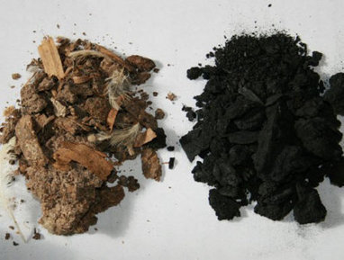 From Kansas to Kenya, Biochar Can Capture Carbon and Improve Soil - Environment - GOOD | Sustainable Futures | Scoop.it