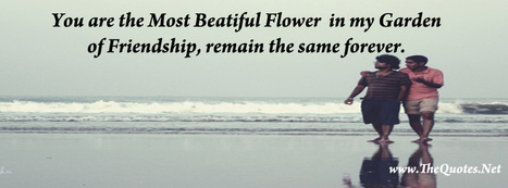 Facebook Cover Image - Friendship Quotes - TheQuotes.Net | Facebook Cover Photos | Scoop.it